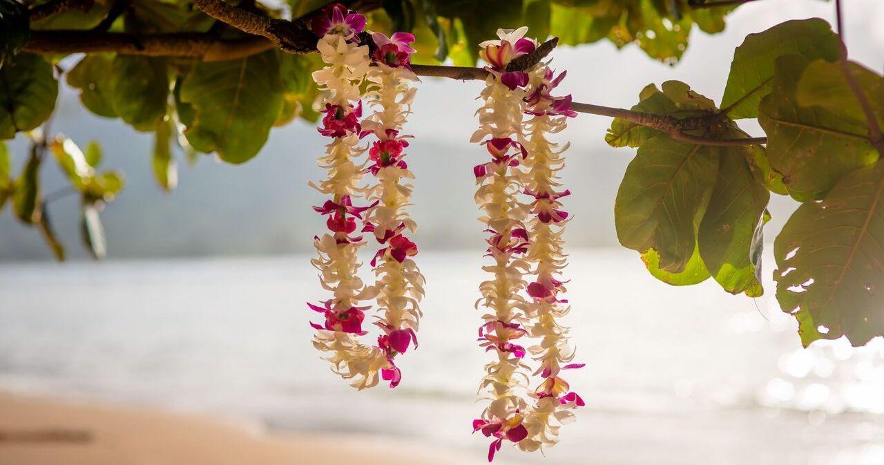 Hawaiian leis haku alii kauai weddings izmirmasajfo
