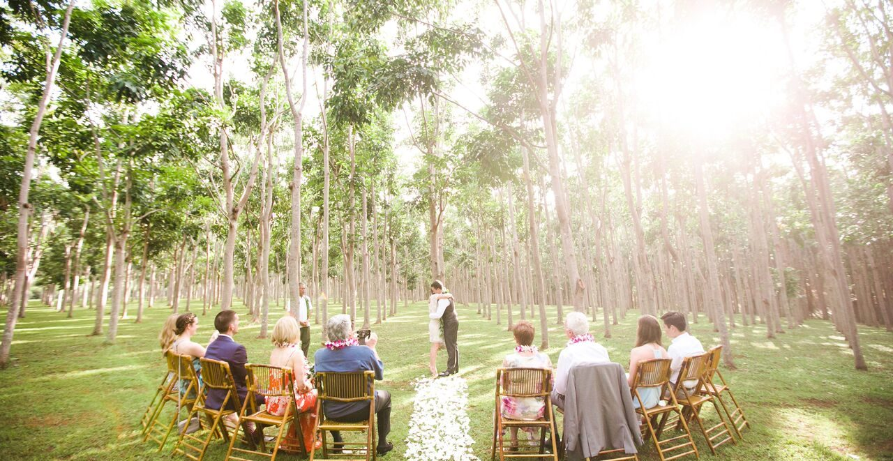 Family Wedding Planner on Kauai