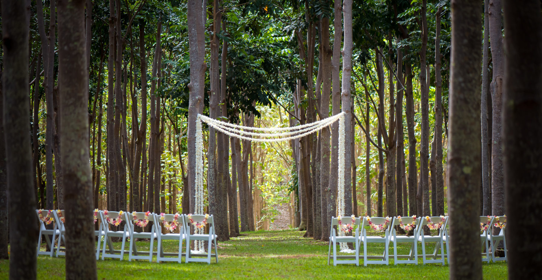 Gorgeous flower arch for intimate wedding in the hardwood forest on Kauai